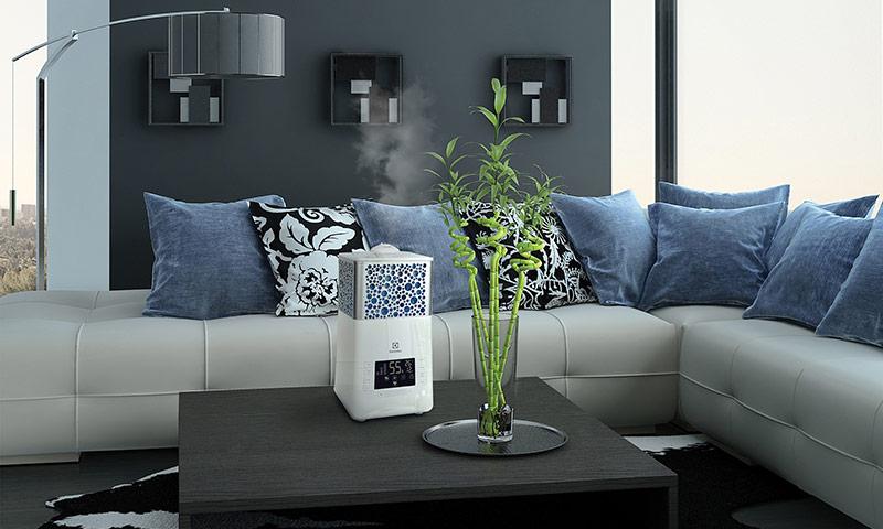 увлажнитель воздуха в квартиру